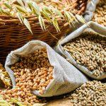 Grano, farina e pasta integrale disponibili sullo shop online senza spese di spedizione